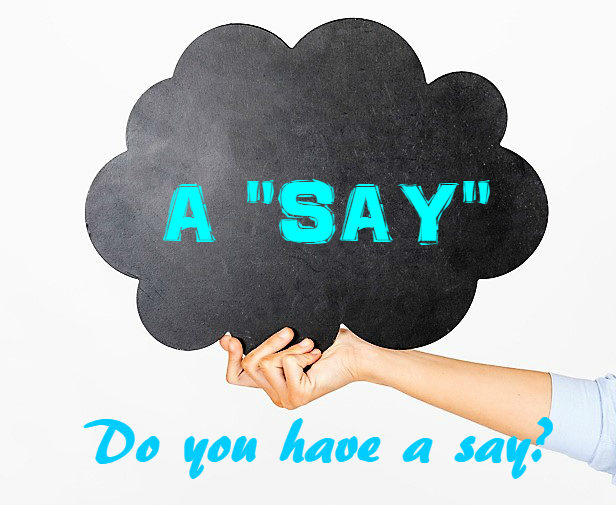 do you have a say の意味とは say の意外な意味と使い方を