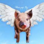 When pigs fly. の意味とは?アメリカ人が解説するよ!